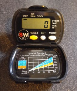 traditional-electronic-pedometer